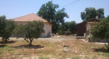 Farm In Agur - Farms  Farm Investment , 1 Pictures